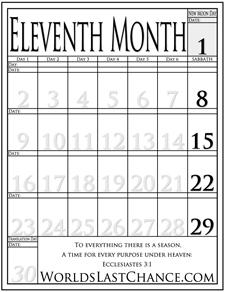 Month 11