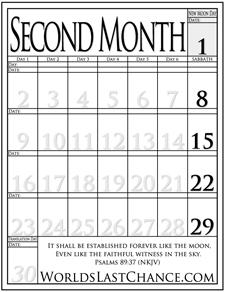 Month 2