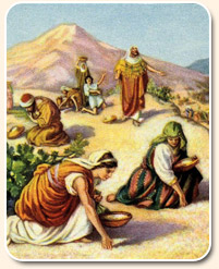sabbath preparation - children of israel gathering manna